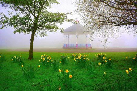 Springtime by James Badics