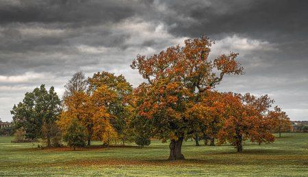 Full Autumn Colours by Mark Slater
