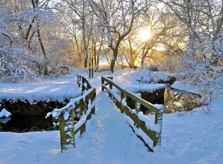 The Bridge in Winter by John Gregson