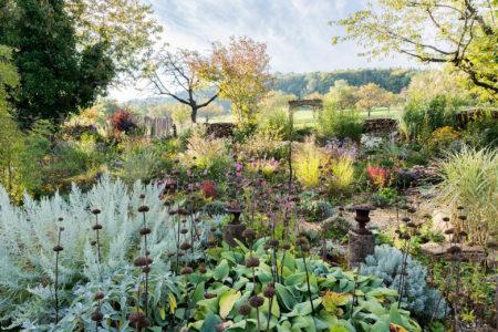 Garden of the Senses by Benedikt Dittli