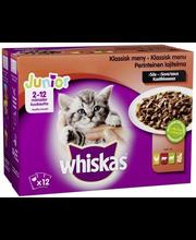 Täissööt kassidele, lihavalik kastmes 12 × 100 g, Junior