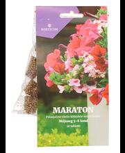 MARATON väetisetabletid suvelilledele Horticom 10tk