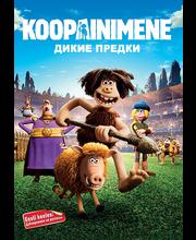 Dvd Koopainimene