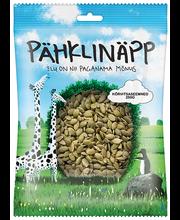Pähklinäpp kõrvitsaseemned 250 g