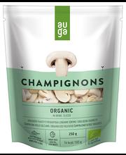 Viilutatud šampinjonid soolvees 250/140 g, mahe