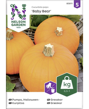 85811 Kõrvits, Halloweeni Baby Bear