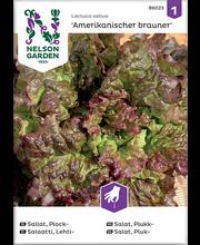 86023 Aedsalat Amerikanischer brauner
