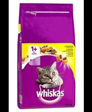 Kuivtoit täiskasvanud kassidele kanalihaga 3,8 kg