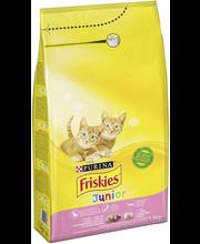 Friskies Junior täissööt kassidele kana, piima ja köögiviljad...