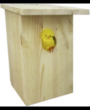 Linnupesakast lamekatus 8x12x28 cm