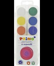 Vesivärvid Primo 12 tk+pintsel