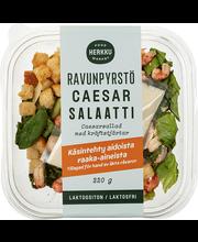Caesarisalat krevettidega, laktoosivaba 220 g