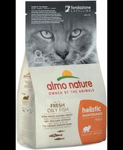Almo Nature Holistic Cat kuivtoit kassidele kala ja riisiga, 400 g