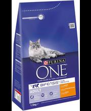 Kuivtoit kassidele kanaliha ja täisteraviljaga 1,5 kg