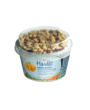 Aprikoosimoosi ja jõhvikamüsliga kreeka jogurt