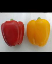 Mahe paprika  mix, I klass, 350g