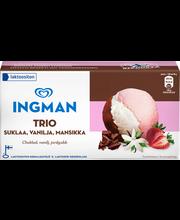Maasika-, vanilli- ja šokolaadikoorejäätis, 1 l