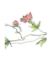 Salvrätik 33 cm 20tk kirsikka