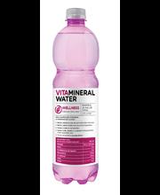 Vitamineral Wellness vaarika-aaloe vera maitseline vitamiiniv...