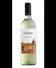 Anterra Pinot Grigio KGT vein 11,5% 750 ml