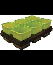 Istutuspott 8x8 cm 12 tk plast roheline +2 alust