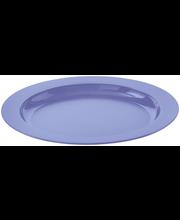 Taldrik 25 cm, sinine plast
