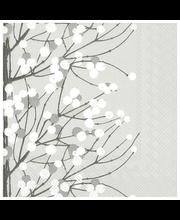 Salvrätikud 24 cm, 20tk Lumimarja Hall