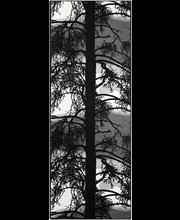 Vaip Kelohonka 80 x 160  cm, hall