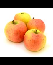 Õun Katre pakitud I klass