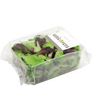 Beebi lehtsalati mix