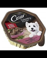 Koeratoit vasika- ja kalkuniliha kastmes täiskasvanud koertel...
