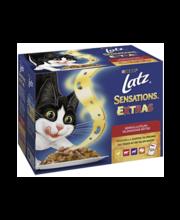 Täissööt kassidele, hõrgutiste valik 12 × 100 g