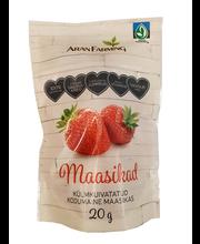 Külmkuivatatud terved maasikad 20 g