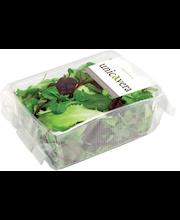 Salat Mesculum, 100 g