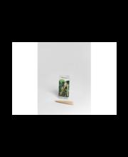 Nimesildihoidik Nelson Garden, kask, 10 cm, 24 tk