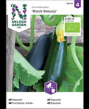 86133 Suvikõrvits Black Beauty  Organic