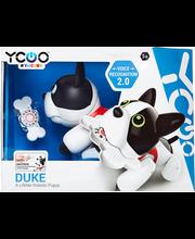 Robotkoer Duke