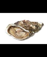 Austrid 100 g