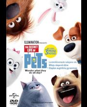 Dvd Lemmikloomade salajane elu