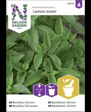 85059 Basiilik Lemon scent, sidruni