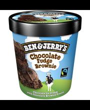 Jäätis Chocolate Fudge Brownie, 500 ml