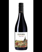 Anterra Pinot Noir KGT vein 12,5% 750 ml