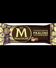 Šokolaadi ja sarapuupähkli pralinee jäätis, 90 ml