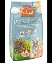 Best friend Festival näriliste täissööt 1kg