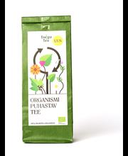 Organismi puhastav tee 20 g, Öko
