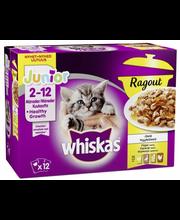 Whiskas Junior täissöödavalik kassidele kastmes linnulihaga, 12 x 85 g