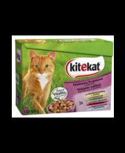 Täissööt kassidele, erinevad valikud 12 × 100 g