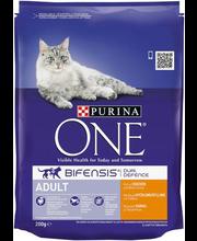 Kuivtoit kassidele kanaliha ja täisteraviljaga 200 g