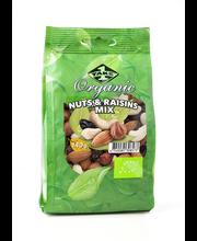 Pähklite ja puuvilja segu 140 g Mahe