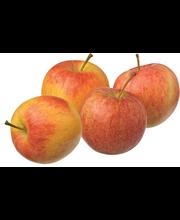 Mahe õun Royal Gala, I klass, taldrikul